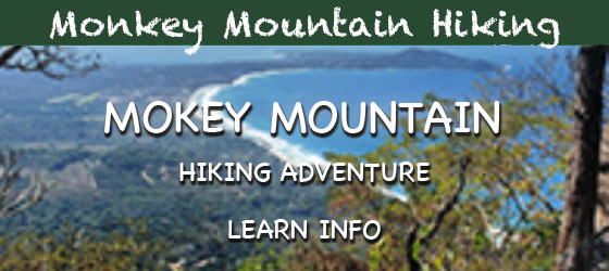 Monkey Mountain Hiking Adventure