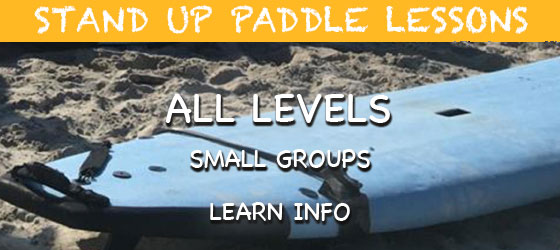 Puerto Vallarta Stand Up Paddle Lessons