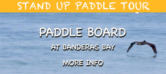 Vallarta Stand Up Paddle Tour (SUP)